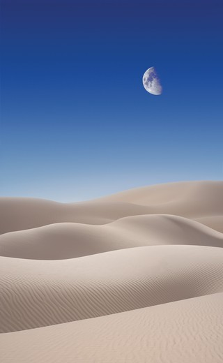 Desert sand dunes against a blue sky with a mid-day moon : Stock Photo