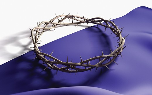 Stock Photo: 4193R-495 A Crown of thorns on a dark cloth