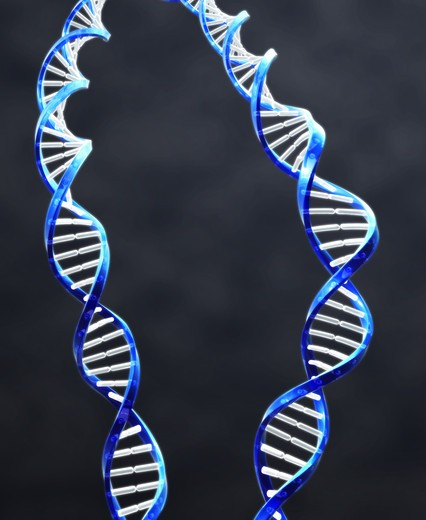 Stock Photo: 4193R-581 2 double helix strands of DNA with Dark background.