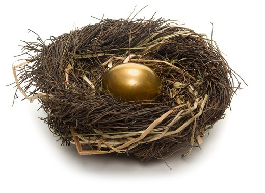 Golden egg inside a nest on white background : Stock Photo