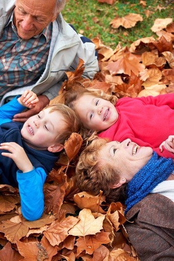 Grandparents lying in the leaves outside with their grandchildren : Stock Photo