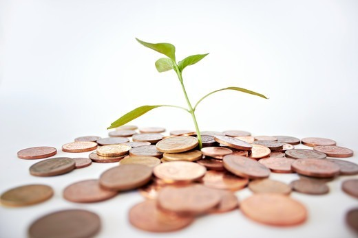 Stock Photo: 4197R-58944 A studio shot of a bunch of coins with a small plant stalk coming out of it