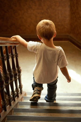 Stock Photo: 4197R-59147 Rear view of a young boy walking down the stairs at home