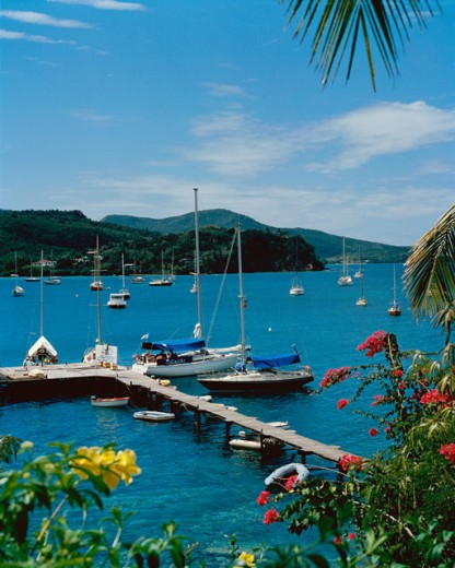 Stock Photo: 42-318 High angle view of boats at a dock, Trois Islets, Martinique