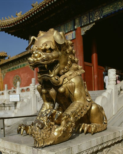 Close-up of the statue of a lion, Forbidden City, Beijing, China : Stock Photo