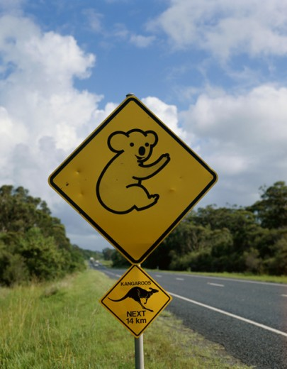Close-up of animal crossing sign on a roadside, Australia : Stock Photo