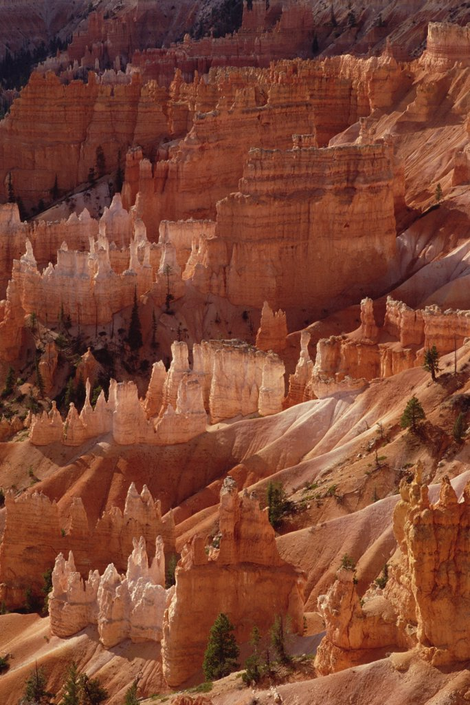 Hoodoo formations from Sunrise Point, Bryce Canyon National Park, Utah : Stock Photo