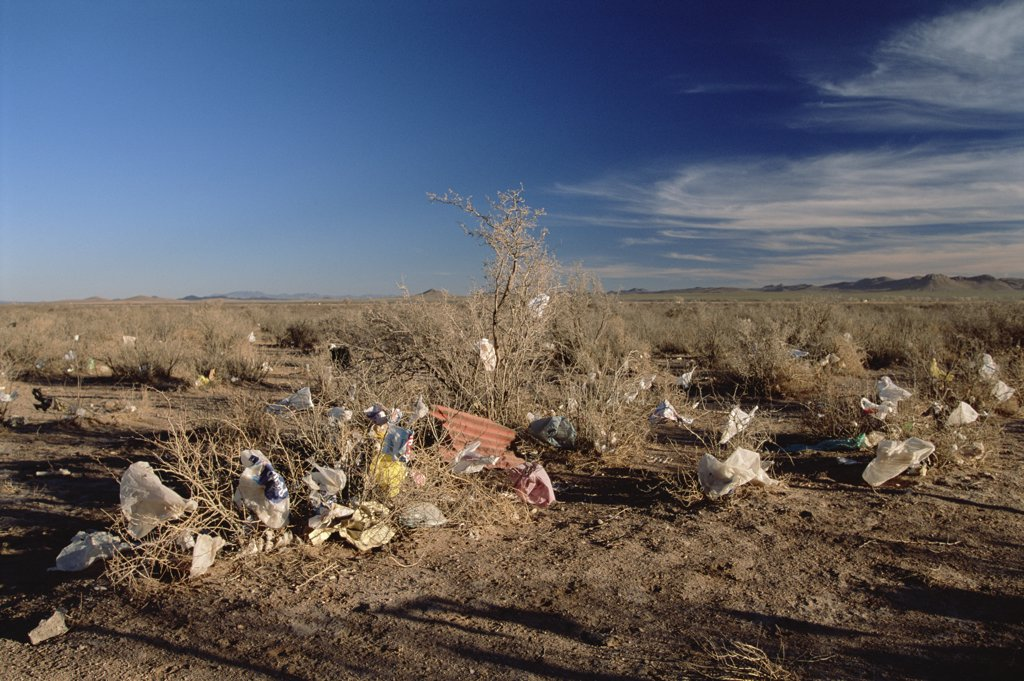 Stock Photo: 4201-31449 Garbage dumped in desert near Fernandez Leal, State of Chihuahua, Mexico