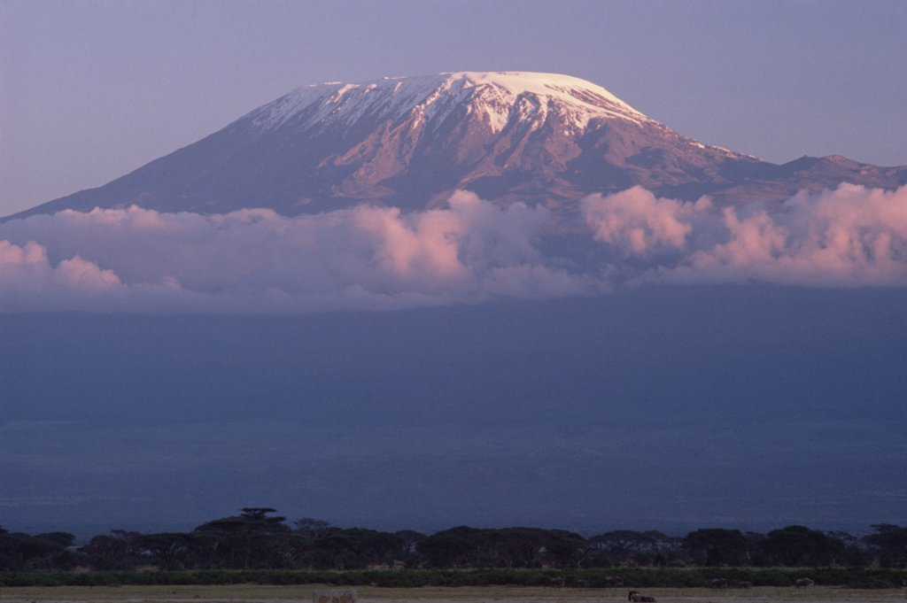 Stock Photo: 4201-31577 Mt Kilimanjaro as seen from Amboseli National Park, Kenya