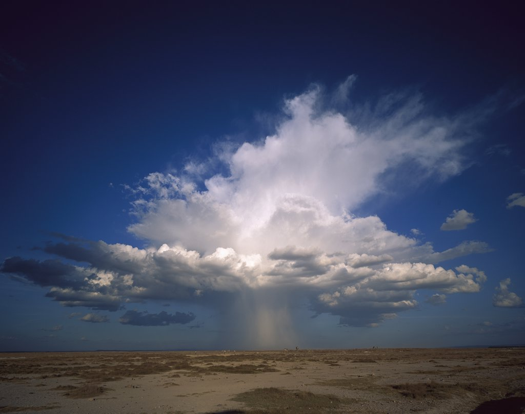 Stock Photo: 4201-31898 Altocumulus thunder head dumping rain on pan, Amboseli National Park, Kenya