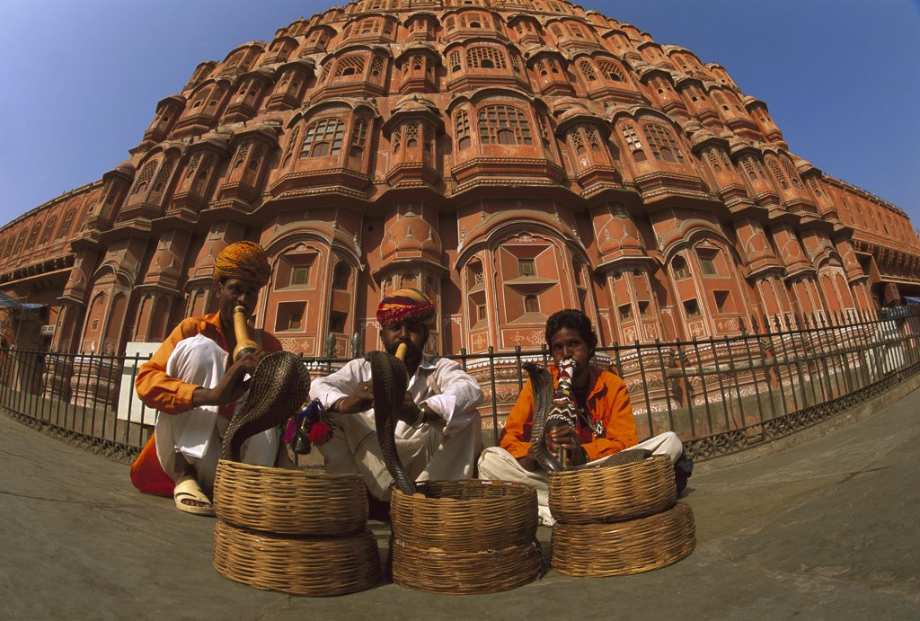 Stock Photo: 4201-37839 Snake charmers with Cobras (Naja sp) in front of Palace of the Winds, Jaipur, Rajasthan, India