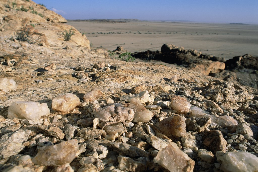 Stock Photo: 4201-43427 Grasshopper (Pamphagidae) camouflaged as a stone, Namib Desert, Namibia