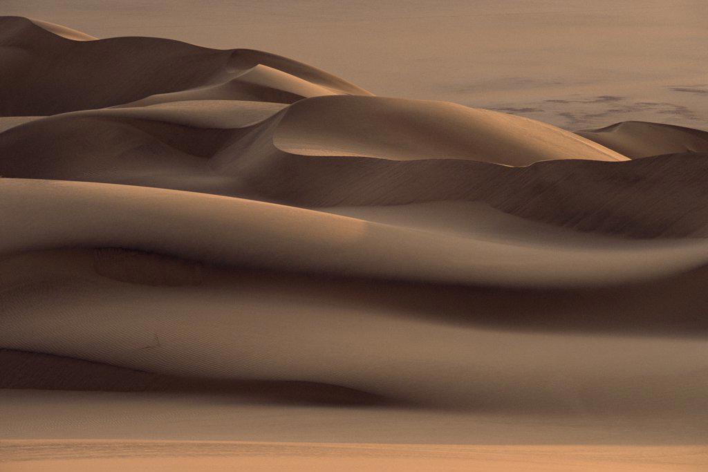 Stock Photo: 4201-43435 Sand dunes south of the Kuiseb River, Namib Desert, Namibia