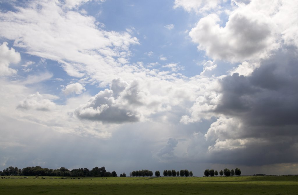 Stock Photo: 4201-43800 Thunderhead clouds over polder landscape, Stompwijk, South Holland, Netherlands