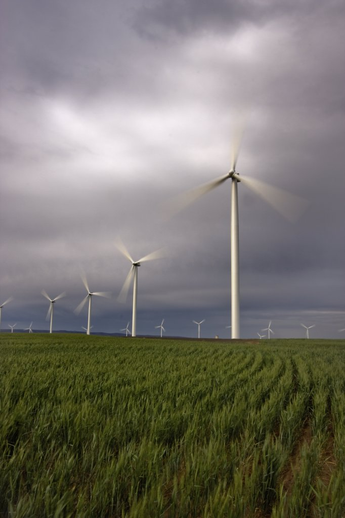Stock Photo: 4201-47906 Biglow Wind Farm near the Columbia River, Oregon