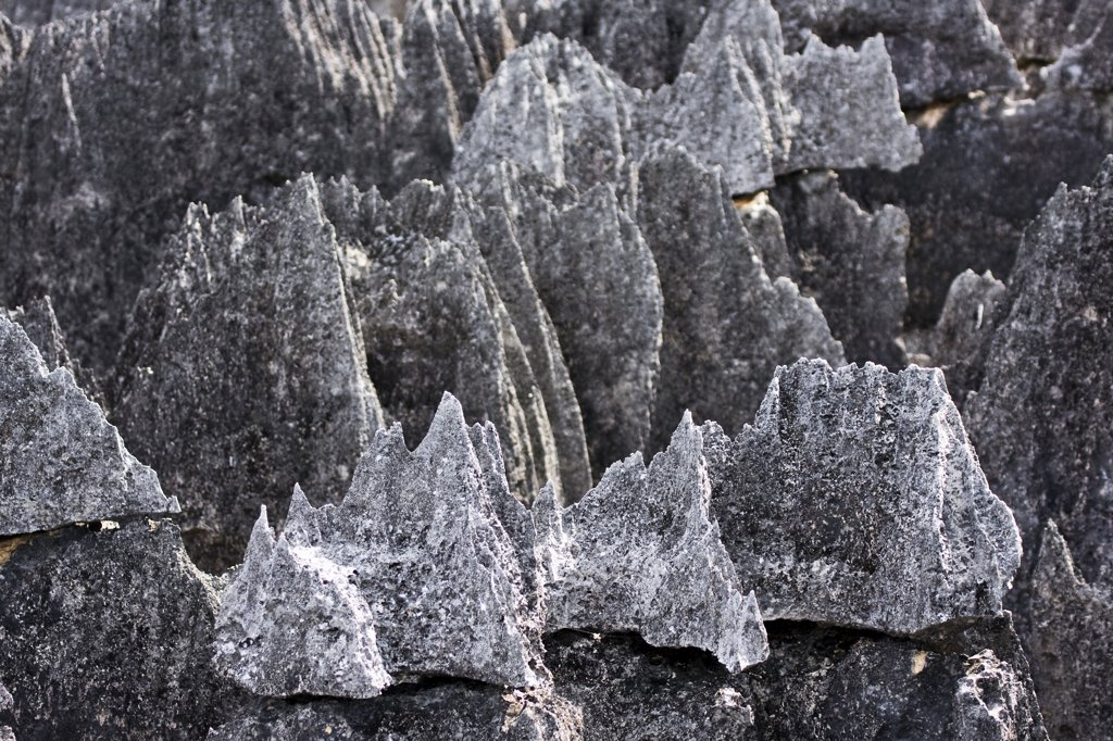 Stock Photo: 4201-58183 Tsingy rock formations, Bemaraha National Park, western Madagascar