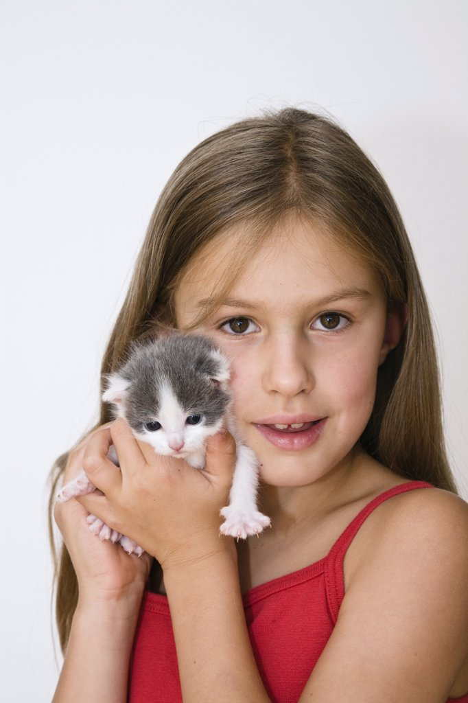 Stock Photo: 4201-61732 Domestic Cat (Felis catus) kitten with young girl, Germany
