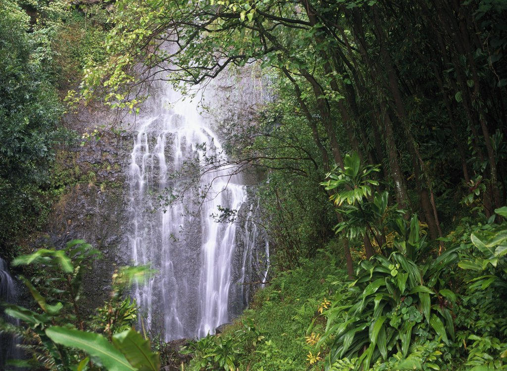 Stock Photo: 4201-6239 Waterfall along Hana coast, Maui, Hawaii