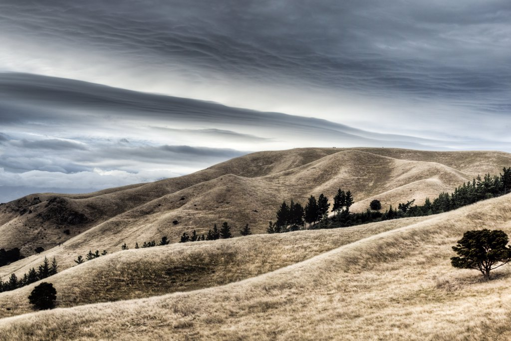 Stock Photo: 4201-63906 Windblown dry grass on hills near Seddon with storm clouds overhead, Marlborough, New Zealand
