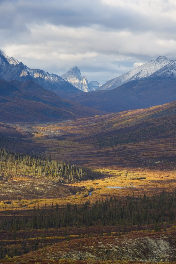 View from North Fork Pass towards Tombstone Mountains, Canada : Stock Photo