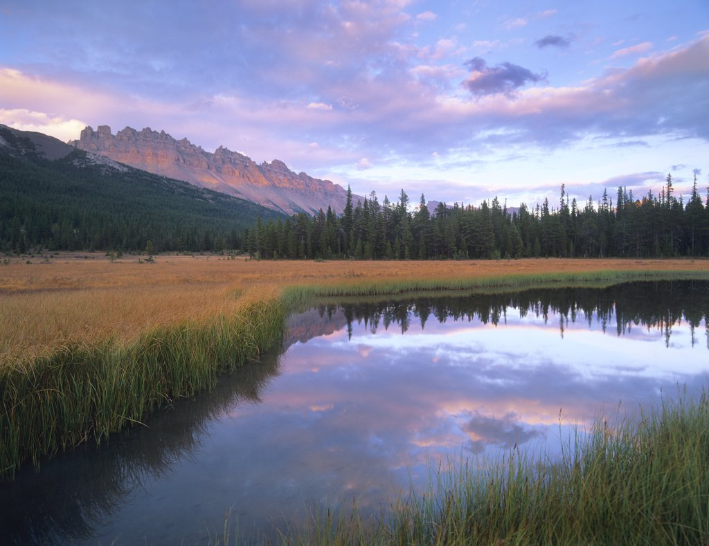 Stock Photo: 4201-6929 Dolomite Peak and Bow River backwaters, Banff National Park, Alberta, Canada