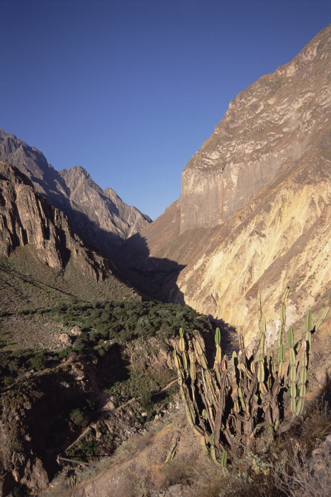 Afternoon sun revealing varied geology, 3400 meter deep canyon, Colca Canyon, Peru : Stock Photo