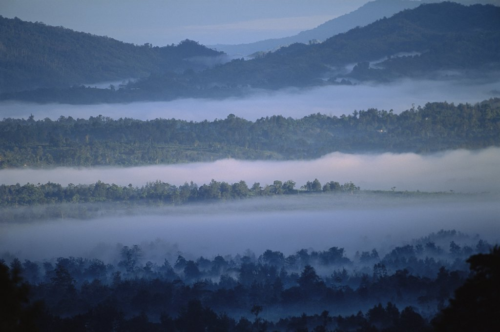 Morning fog in Tari Mountains, homeland of the Huli people, southern highlands of Papua New Guinea : Stock Photo
