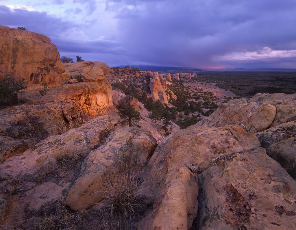 Rocky outcroppings in El Malpais National Monument, New Mexico : Stock Photo
