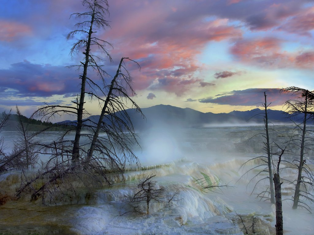 Stock Photo: 4201-82047 Steam rising from travertine formations, Minerva Terrace, Mammoth Hot Springs, Yellowstone National Park, Wyoming