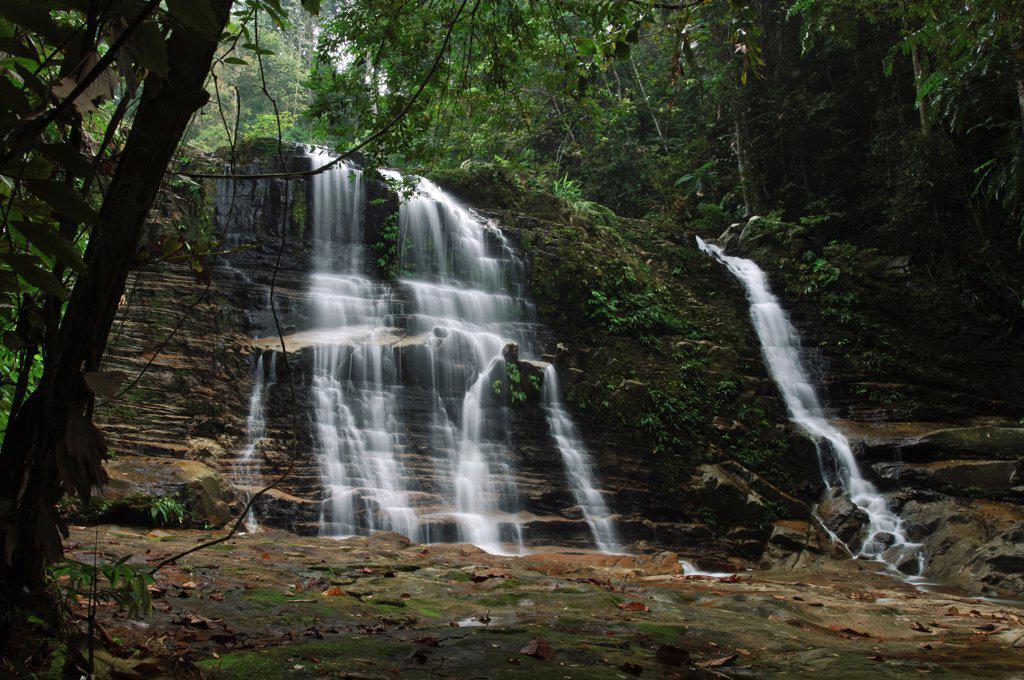 Waterfall in rainforest interior, Kubah National Park, Malaysia : Stock Photo