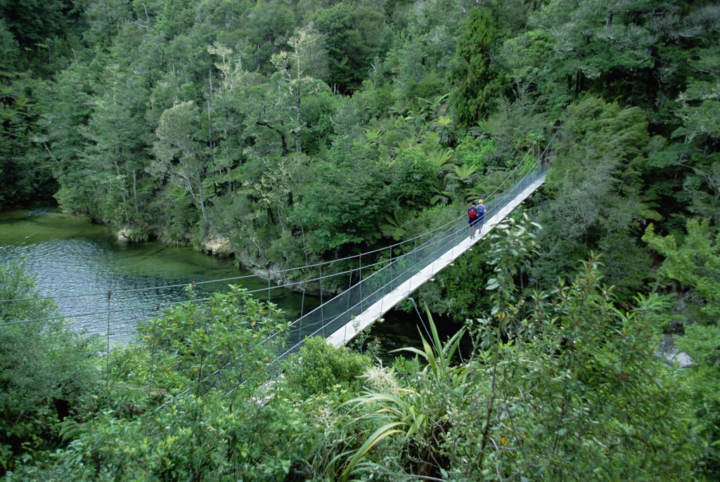 Hiker crossing suspension bridge, Abel Tasman National Park, South Island, New Zealand : Stock Photo