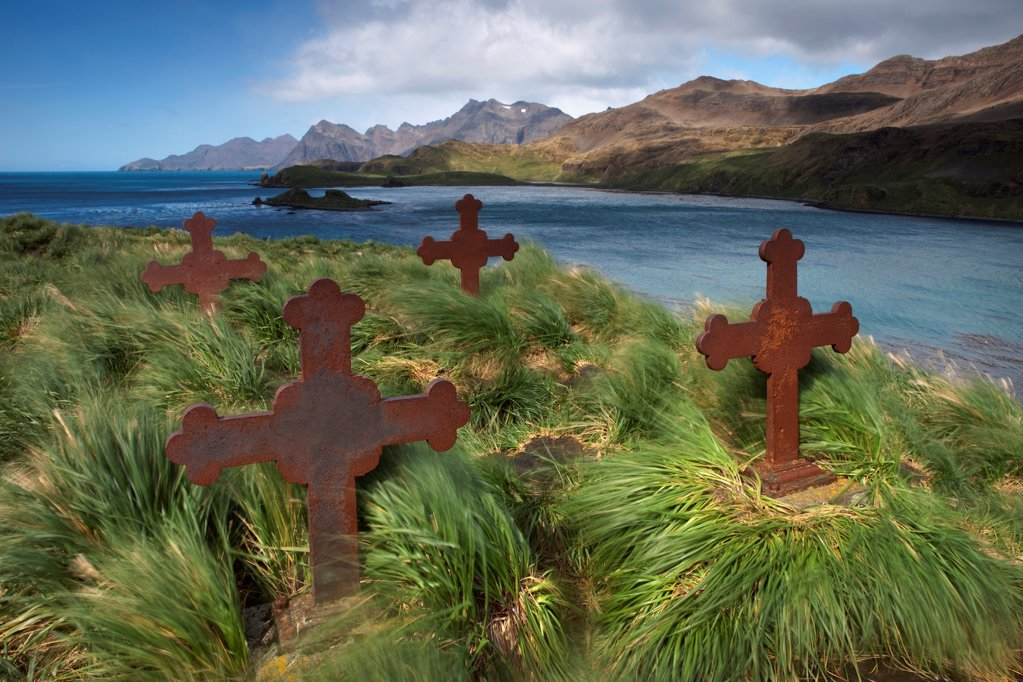 Old cemetery during high winds, Prince Olav Harbour, South Georgia Island : Stock Photo