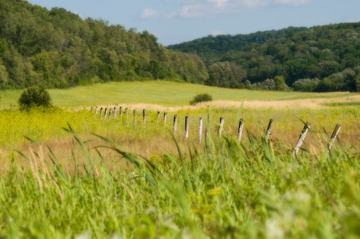 Stock Photo: 4206-160 Fence in the field, Wisconsin, USA