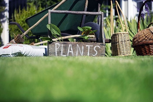Stock Photo: 4208R-10033 Box labeled ´plants´ in garden beside wheelbarrow, compost and wicker baskets, surface level
