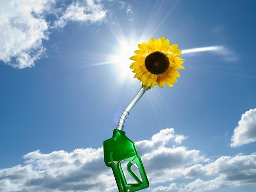 Stock Photo: 4208R-14442 Green gas pump with sunflower at end of nozzle