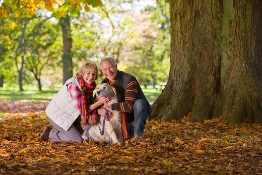 Happy senior couple sitting in autumn leaves petting dog : Stock Photo