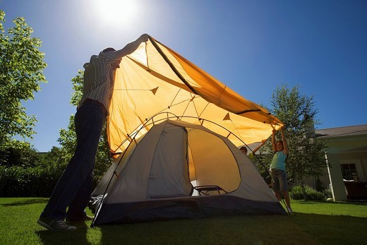 Father and children 8-10 assembling dome tent on garden lawn, placing orange outer canvas over tent frame, smiling, side view backlit : Stock Photo