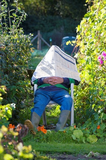 Man napping under newspaper in garden : Stock Photo