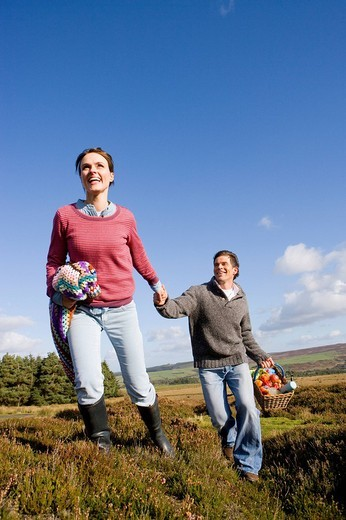 Stock Photo: 4208R-20579 Couple holding hands and having picnic in countryside