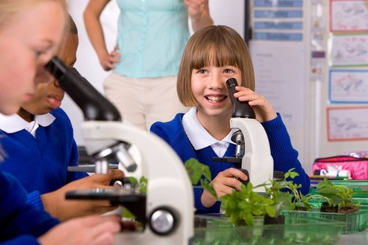 Stock Photo: 4208R-20797 School children looking into microscopes in classroom laboratory