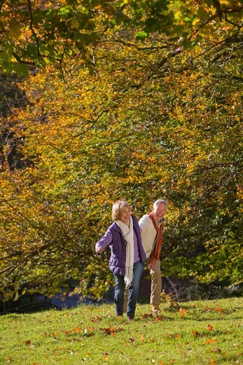 Happy senior couple holding hands and walking outdoors in autumn : Stock Photo