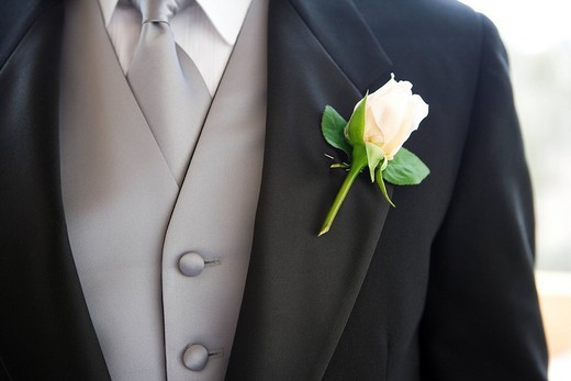 Groom wearing buttonhole, close-up, mid-section : Stock Photo