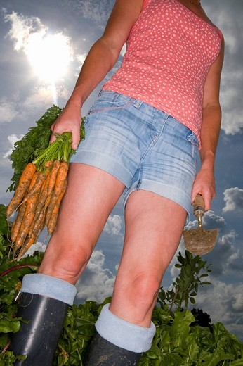 Woman in garden holding a trowel and bunch of carrots : Stock Photo