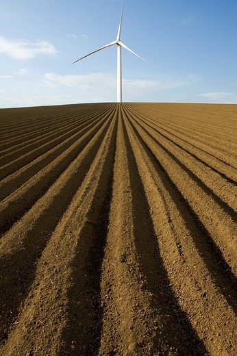 Wind turbine in ploughed field : Stock Photo