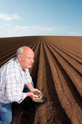 Stock Photo: 4208R-25103 Farmer cupping soil in ploughed field