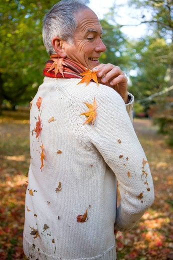 Senior man picking autumn leaves from his sweater : Stock Photo