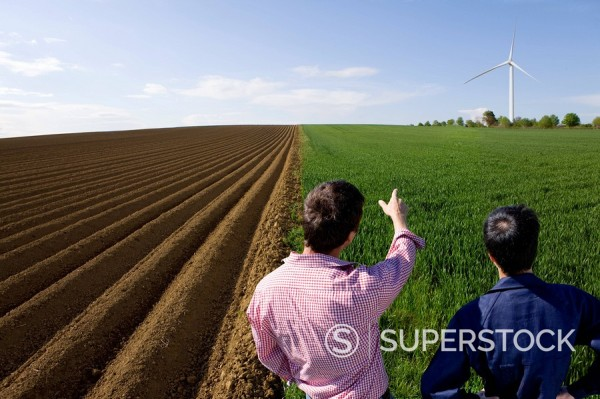 Farmers standing in young wheat field next to ploughed field and pointing at wind turbine in distance : Stock Photo
