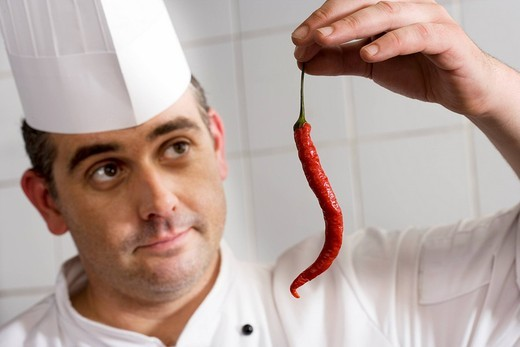 Male chef examining single red chilli pepper in commercial kitchen, close-up : Stock Photo