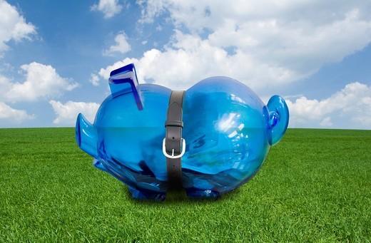 Stock Photo: 4208R-9445 Belt squeezing piggy bank
