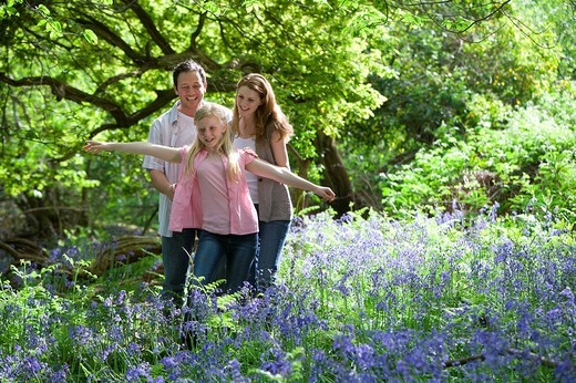 Family walking in field of bluebell flowers : Stock Photo